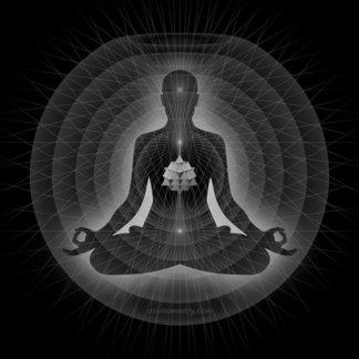 ~ Meditator 64Tet Grey ~