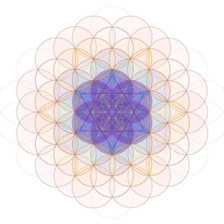 ~ VE Flower of Life ~